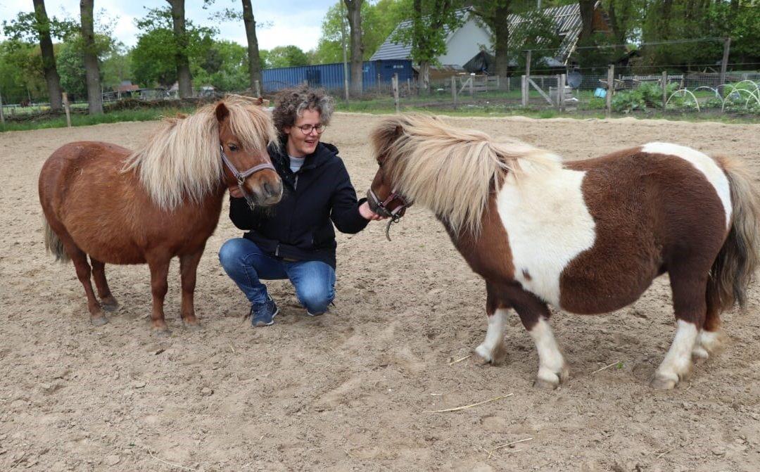 Zorghoeven coacht mensen met dementie met behulp van paarden